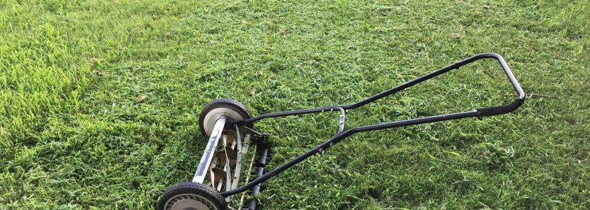 Cea mai bună mașină de tuns iarba