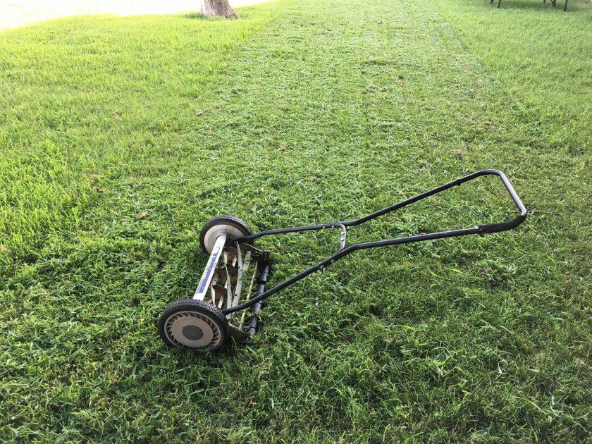 Cea mai buna masina de tuns iarba